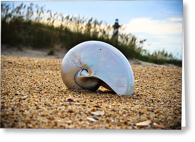 Shell Greeting Card by Gasin Trossen