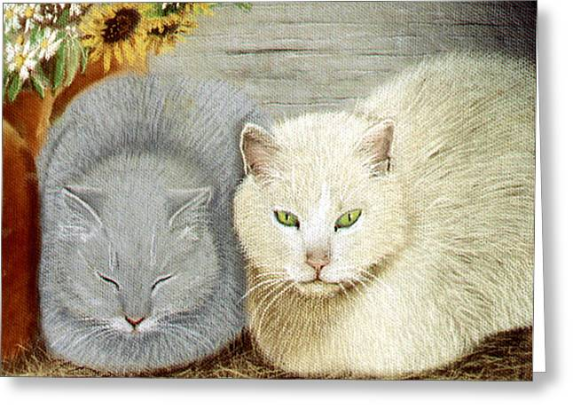 Soft And Fluffy Greeting Card by Jan Amiss