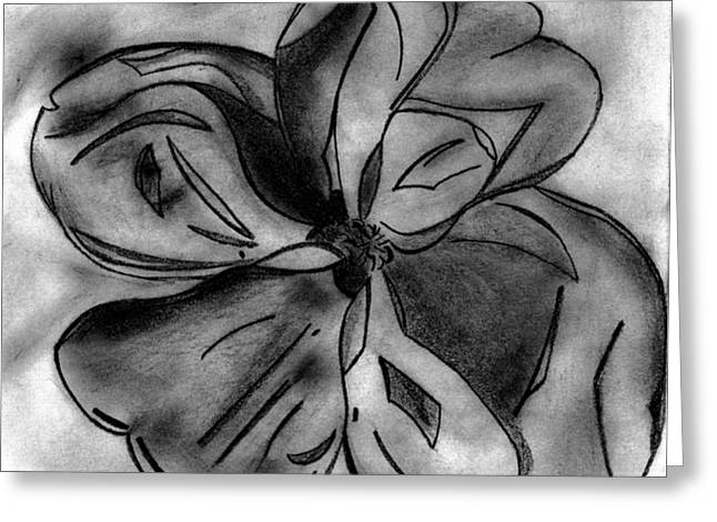 Alabama Drawings Greeting Cards - Southern Magnolia Blossom Greeting Card by Elizabeth Briggs