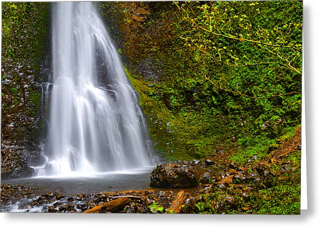 Waterfall Photography Greeting Cards - Spring Cascade Greeting Card by Andrea Hazel Ihlefeld
