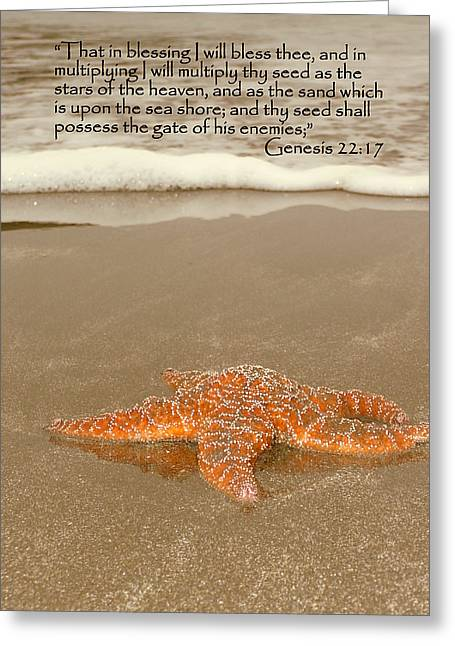 Starfish Washed Ashore Genesis 22 Greeting Card by Cindy Wright