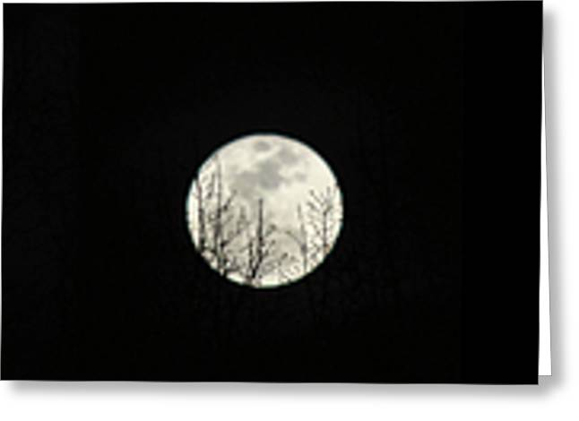 March Moon Greeting Cards - Super Moon Progression Greeting Card by Jai Johnson