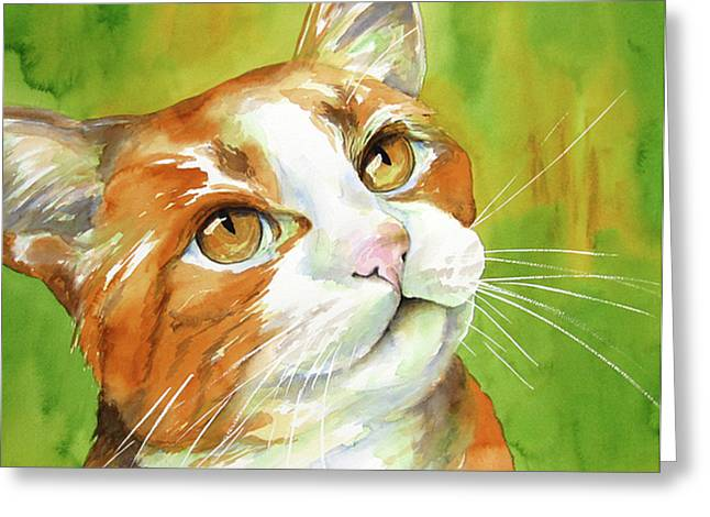 Cat Prints Greeting Cards - Tan and White Domestic Cat Greeting Card by Cherilynn Wood