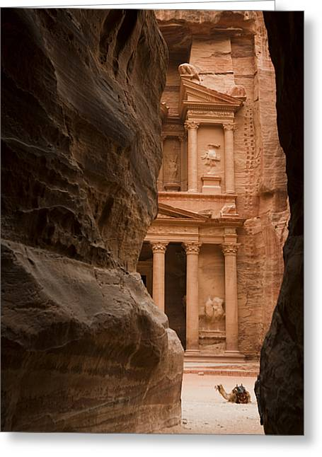 Petra - Jordan Greeting Cards - The Famous Treasury With A Camel Greeting Card by Taylor S. Kennedy