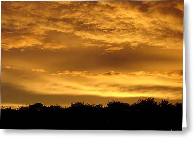 Toffee Greeting Cards - Toffee sunset 2 Greeting Card by Carol Lynch