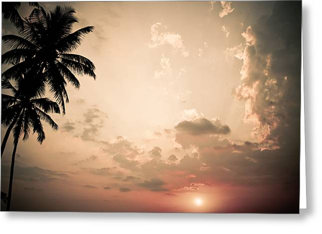 Amazing Sunset Greeting Cards - Tropical Sun Greeting Card by Nila Newsom