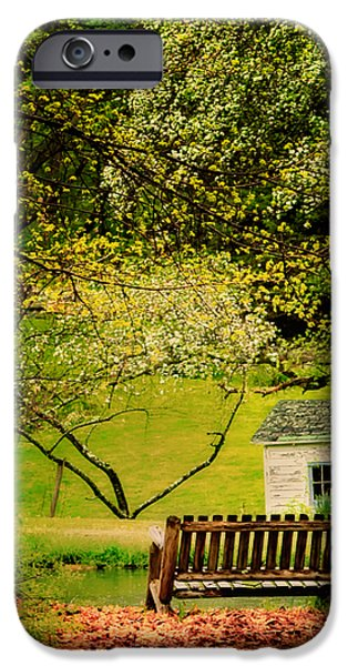 Shed iPhone Cases - A Bench under Spring Canopy iPhone Case by Thomas Schoeller