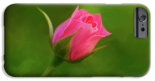 Time2paint iPhone Cases - Blooming Pink Rose iPhone Case by Michael Greenaway