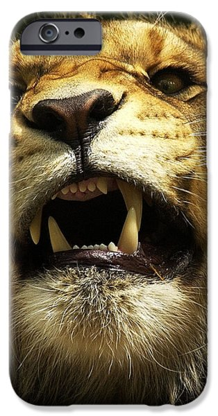 Animals Photographs iPhone Cases - Fierce iPhone Case by Wade Aiken