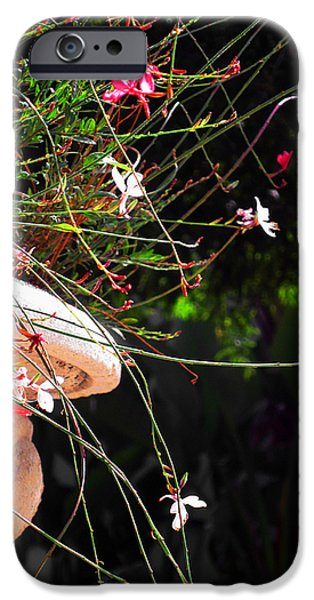 Garden Scene Photographs iPhone Cases - Filigree-III iPhone Case by Susanne Van Hulst