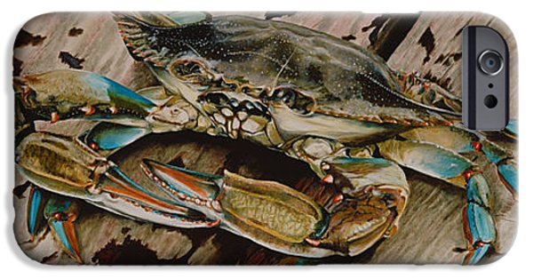 Home Paintings iPhone Cases - Portrait of a Blue Crab iPhone Case by Rob Dreyer AFC