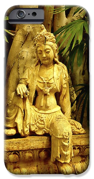 Hindu Goddess iPhone Cases - Tropical Buddha iPhone Case by Cheryl Young