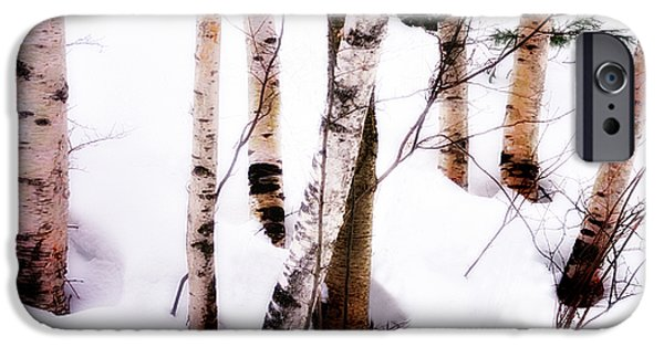 Recently Sold -  - New England Snow Scene iPhone Cases - White Birch Trunks - Winter Fine Art Nature  iPhone Case by Thomas Schoeller