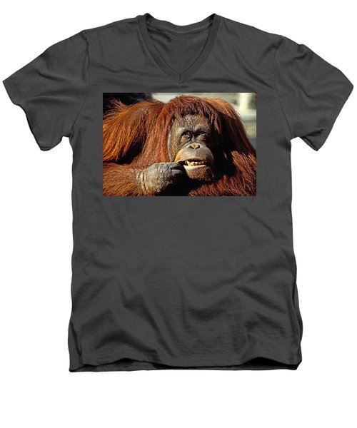 Orangutan  Men's V-Neck T-Shirt by Garry Gay