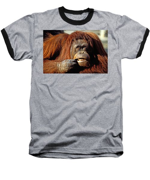 Orangutan  Baseball T-Shirt by Garry Gay
