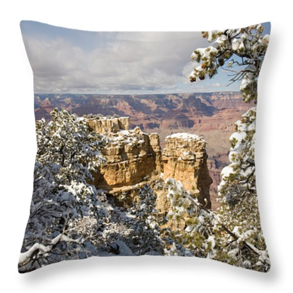 Winter Time On The South Rim Throw Pillow by Michael S. Lewis