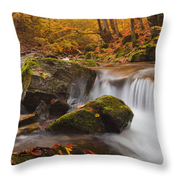 Autumn Forest Throw Pillow by Evgeni Dinev