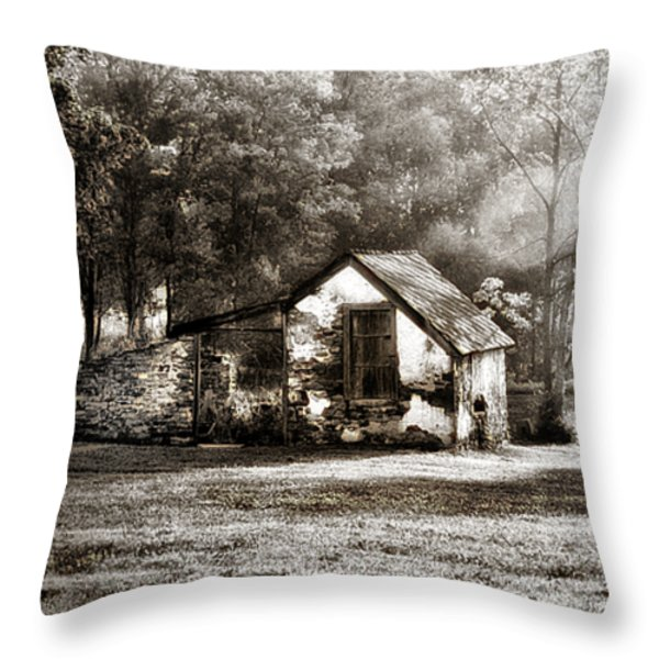 Narcissa Road Springhouse Throw Pillow by Bill Cannon