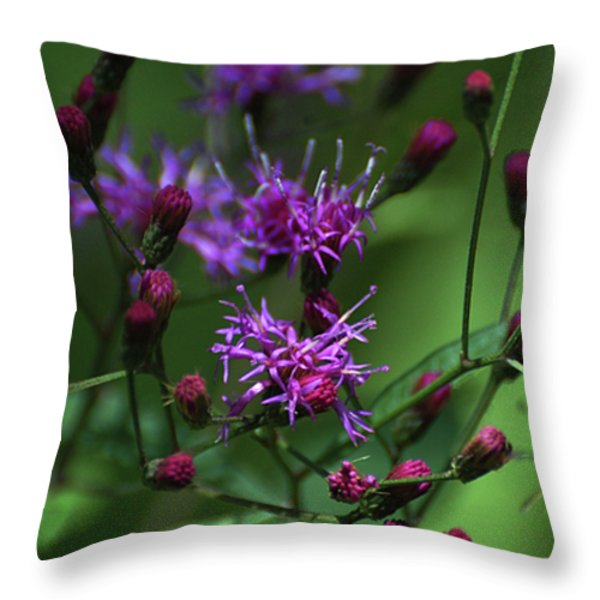 Purple Flowers And The Flirtatious Moth Throw Pillow by Anahi DeCanio