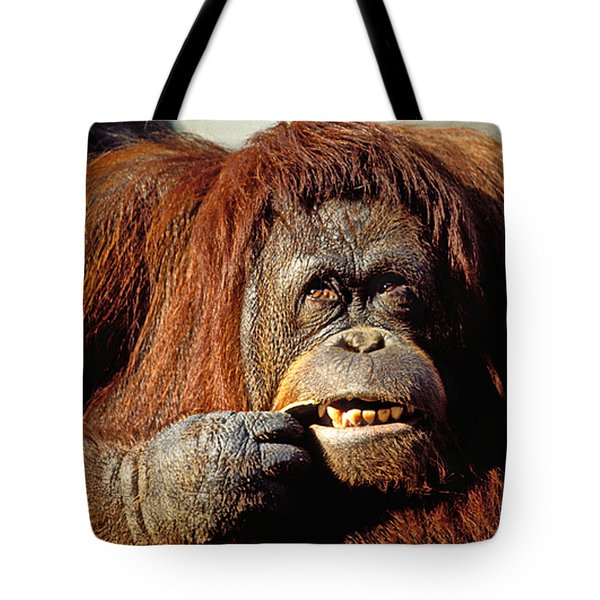 Orangutan  Tote Bag by Garry Gay