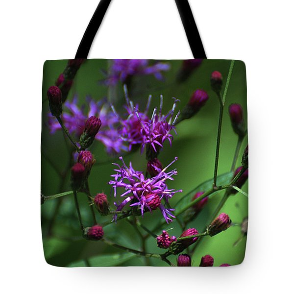 Purple Flowers And The Flirtatious Moth Tote Bag by Anahi DeCanio