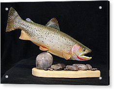 Cutthroat Trout On The Rocks Acrylic Print by Eric Knowlton