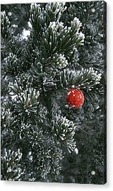 Holiday Ornament Hanging On Snow Dusted Acrylic Print by Kate Thompson