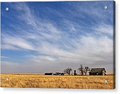 Prarie House Acrylic Print by Peter Tellone