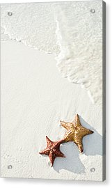 Starfish On Tropical Beach Acrylic Print by Mehmed Zelkovic