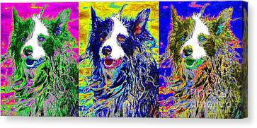 Sheep Dog Three 20130125 Canvas Print by Wingsdomain Art and Photography