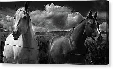 Us Canvas Print by JC Photography and Art