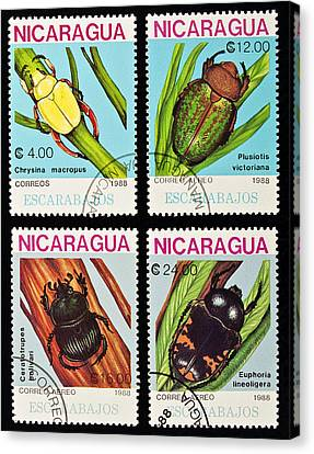 Beetles Stamps Collection. Canvas Print by Fernando Barozza