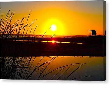 Carpinteria State Beach Canvas Print by Bransen Devey