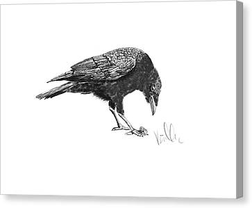 Caw Of The Wild Canvas Print by Barb Kirpluk