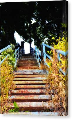 Manayunk Steps Canvas Print by Bill Cannon