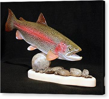Rainbow Trout On The Rocks Canvas Print by Eric Knowlton