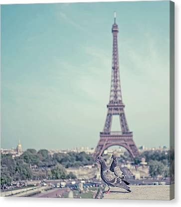 Two Doves In Front Of Eiffel Tower Canvas Print by Cindy Prins