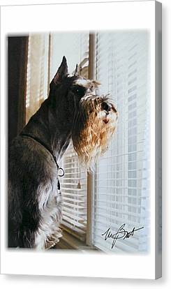 Waiting At The Window Canvas Print by Maxine Bochnia