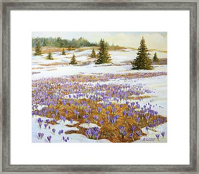 Cold Weather Is Going Away Framed Print by Kiril Stanchev
