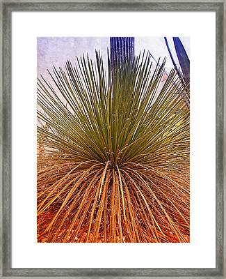 Goood Hair Day Framed Print by Wendy J St Christopher