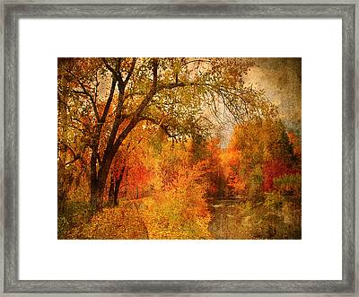 Autumn Pathways Framed Print by Tara Turner