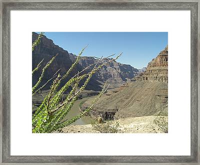 Base Plateau At The Grand Canyon Framed Print by Paul Jessop