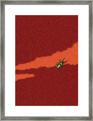 Beetle On Red Fur Framed Print by Pascal VERSAVEL