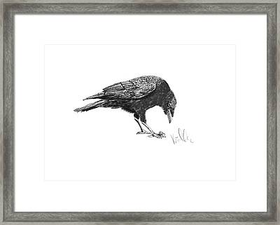 Caw Of The Wild Framed Print by Barb Kirpluk