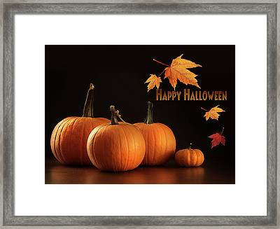 Colorful Pumpkins On Wood Table On Dark  Framed Print by Sandra Cunningham