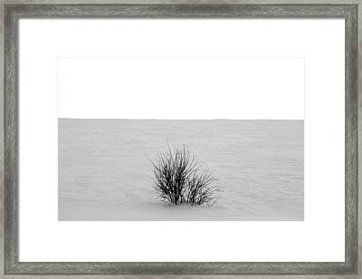 Deep Breath Framed Print by JC Photography and Art