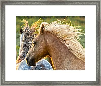 Free Spirits Framed Print by Ron  McGinnis