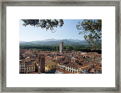 Lucca Tuscany Framed Print by Mathew Lodge