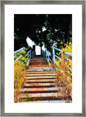 Manayunk Steps Framed Print by Bill Cannon