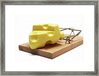 Piece Of Cheese In Mouse Trap Framed Print by Sami Sarkis